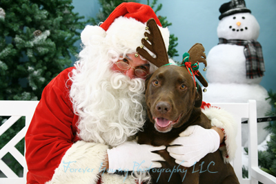 Santa Paws 2010 - Forever Young Photography LLC